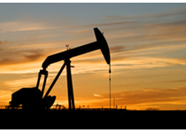 Professional Oilfield Software